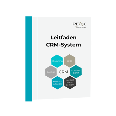 Leitfaden CRM-System (2)